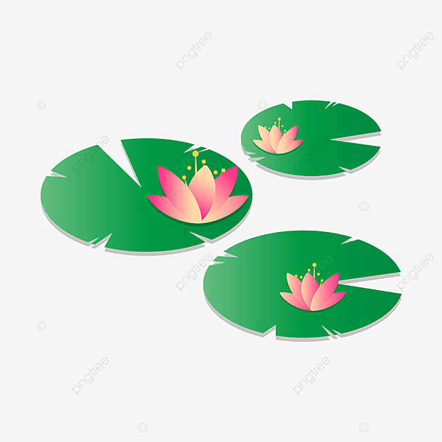 pond water lily clip art