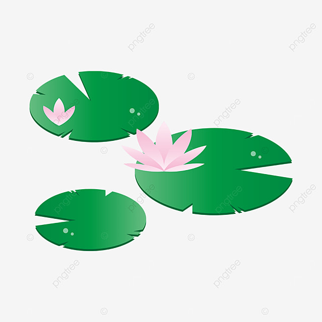 serrated edge leaf water lily clipart
