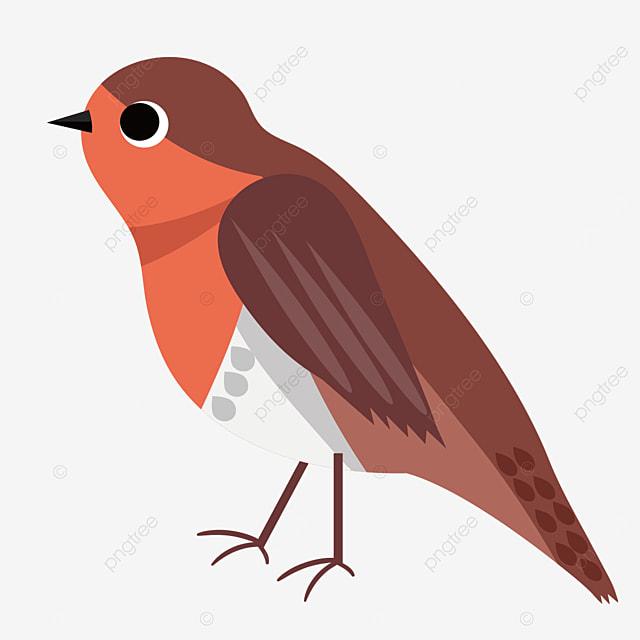 head up robin clip art