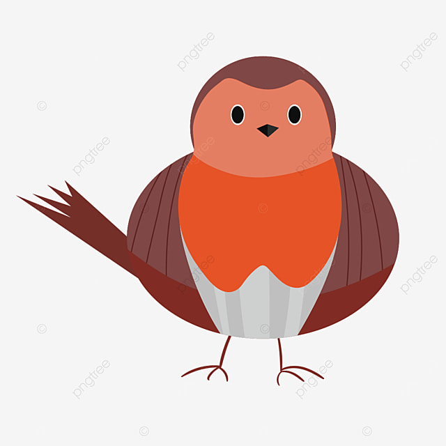 robin frontal clipart