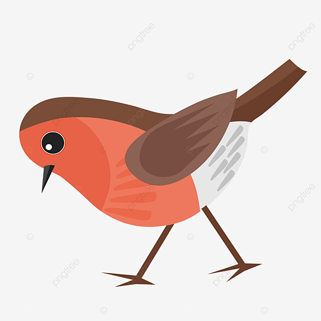 robin looking down clipart