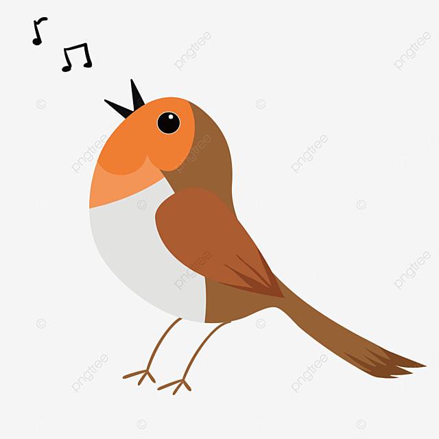 singing robin looking up clip art