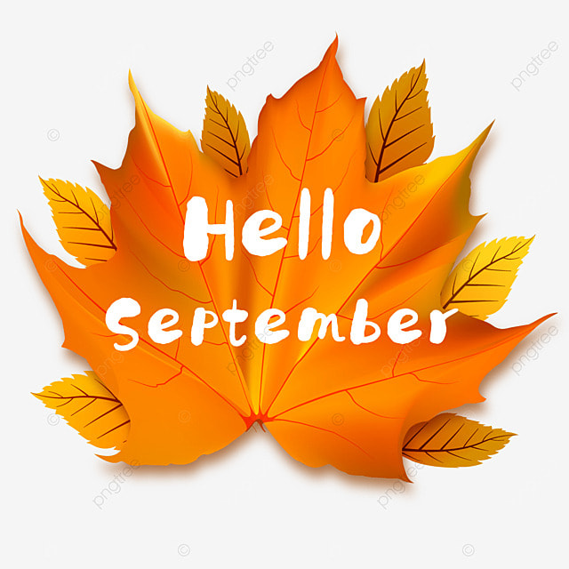 hello september single red maple leaf
