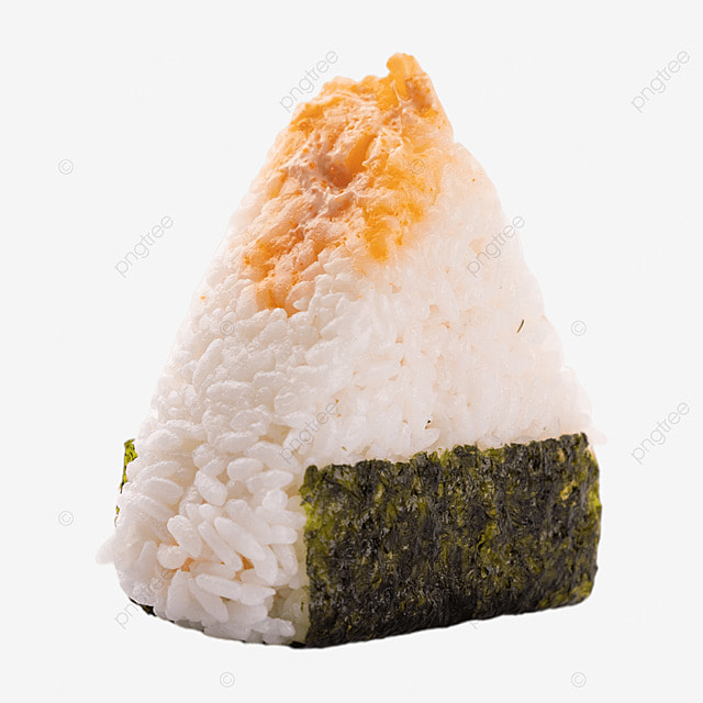 rice ball sushi meat floss lifestyle still life