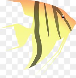 Aquarium Fish Png Images Vectors And Psd Files Free Download On