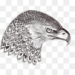 Eagle Eye Magic Man Mcgann