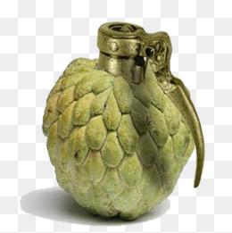 Grenade fruit png images vecteurs et fichiers psd t l chargement gratuit sur pngtree - Grenade fruit dessin ...