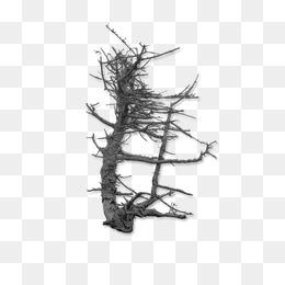 arbre mort png images vecteurs et fichiers psd t l chargement gratuit sur pngtree page 6. Black Bedroom Furniture Sets. Home Design Ideas