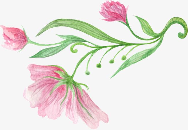 Un Pintado A Mano Flores Dibujo A Lapiz Color Pink Imagen