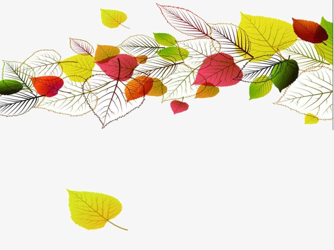 autumn leaves ppt templates fall leaf ppt templates png image and