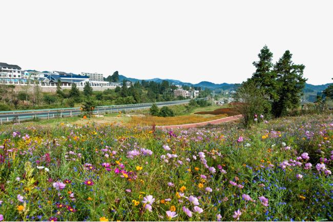 Indah Bunga Lukisan Kota Lanskap Yangchangdong Lanskap Yangchangdong