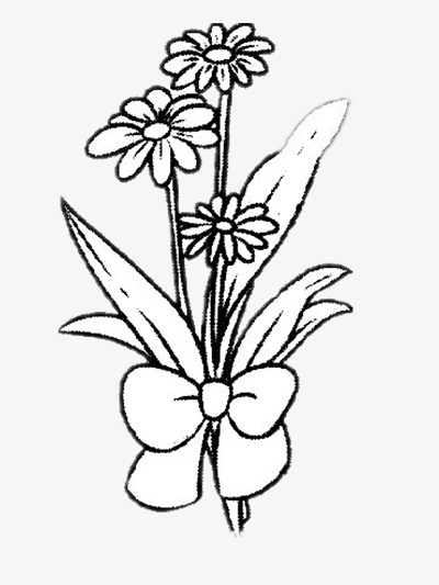 Belles Fleurs Dessin Simple Photo Image Png Pour Le Téléchargement Libre