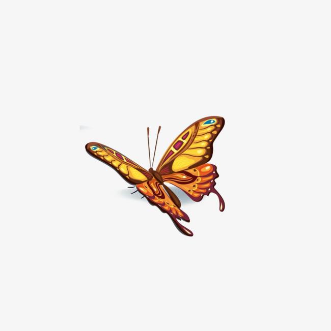 metamorphosis transformation