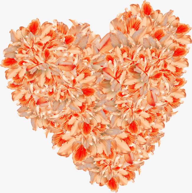 Beautiful Orange Flowers Heart Orange Clipart Heart Clipart