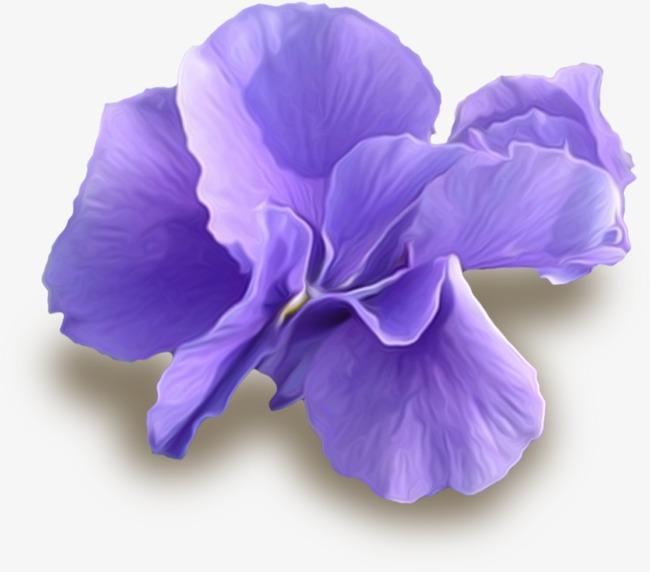 Beautiful purple flowers pretty flowers purple flowers flowers beautiful purple flowers pretty flowers purple flowers flowers png image and clipart mightylinksfo