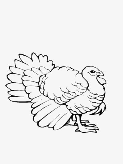 Petit Oiseau Simple Noir Dessin Graphique Image Png Pour Le