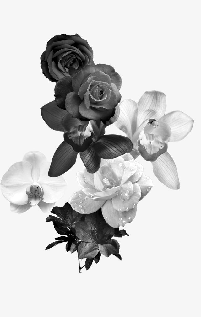 Черно-белые букеты цветов, купить цветы в ижевске дешево хризантемы