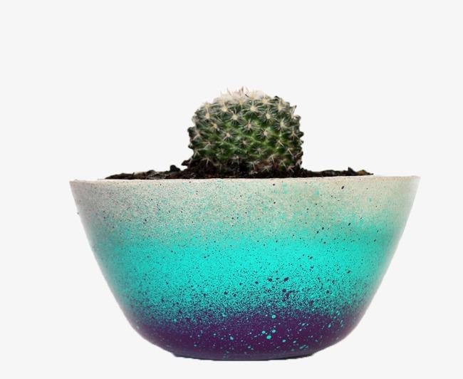Bleu De Pots En Ceramique Des Fleurs Bleu Pot De Fleurs Image Png