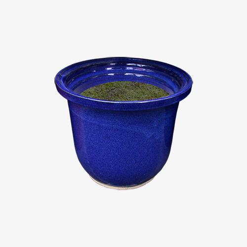 Pot De Fleur Bleue De La Ceramique Bleu Peu Frequent A La Mode Image