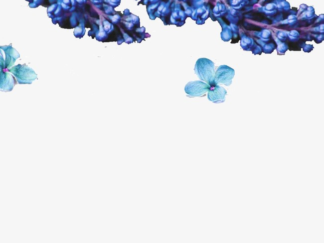 Blue Purple Flower Background Ppt Flower Clipart Blue Purple Png
