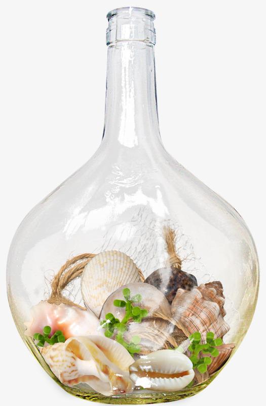 avec des coquillages de bouteilles transparent de la bouteille de verre image png pour le