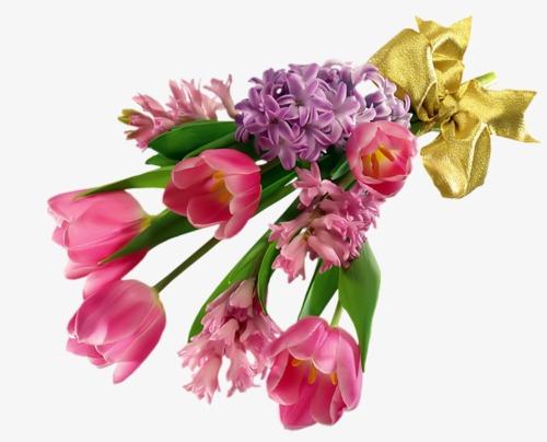 Ramo De Flores Tulip Jacinto Flores Imagen PNG Para