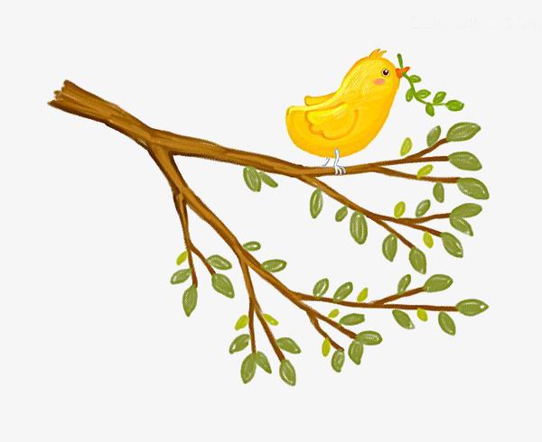 L Oiseau Sur La Branche Petit Oiseau Des Branches Dessin Image Png
