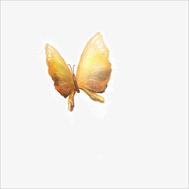 Kupu Golden Rama Gambar Biologi Imej Dan Clip Png