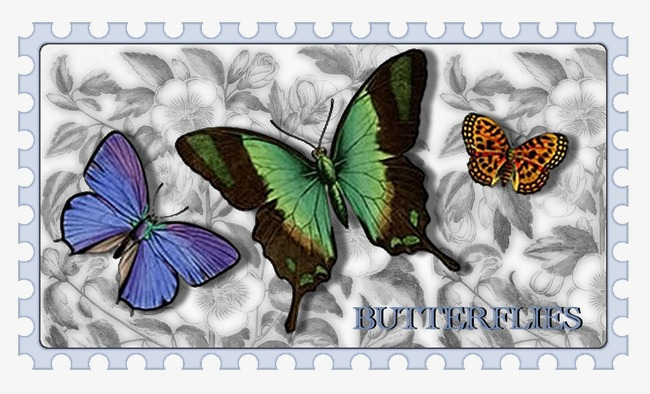 Butterfly Stamp Clipart PNG Image And