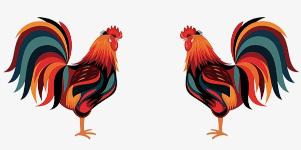 gros noir dessin animé coqs sexe dans la cuisine vidéos