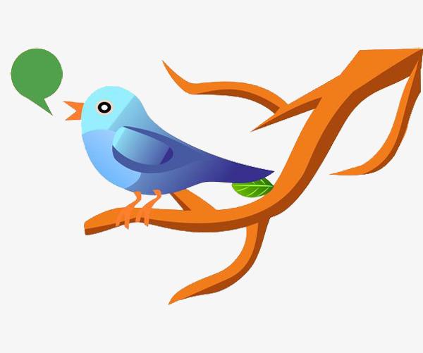 Dessin De Petit Oiseau Sur La Branche Petit Oiseau Oiseau Bleu Les