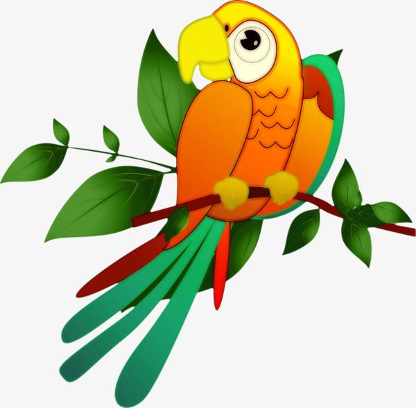 L Oiseau Sur La Branche De Dessins Animes Petit Oiseau Oiseau Des