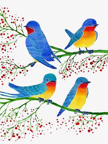 Dessin De L Oiseau Petit Oiseau Des Branches Couleur Image Png Pour