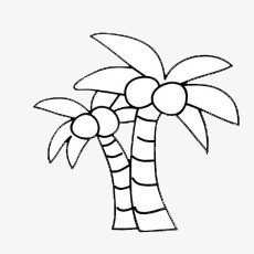 Cartoon Coconut Trees Cartoon Clipart Coconut Clipart Cartoon Png