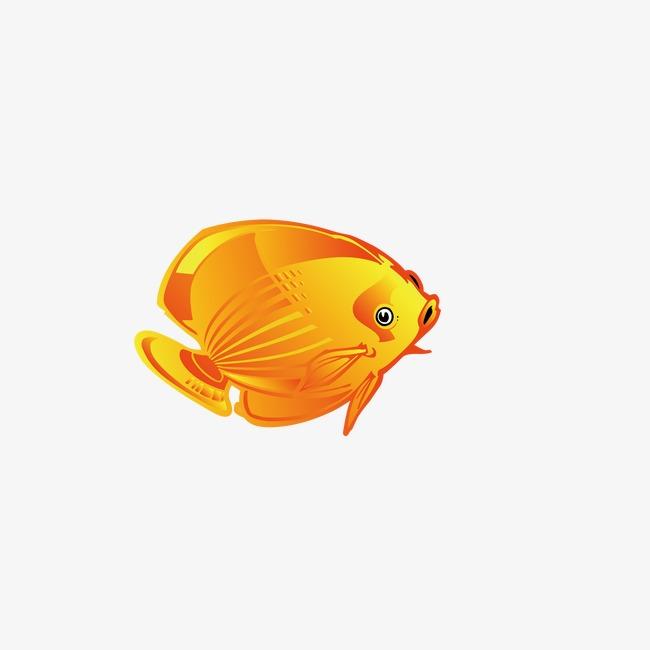 Kartun Ikan Mas Kartun Ikan Mas Ikan Emas Ikan Kecil Imej Png Dan