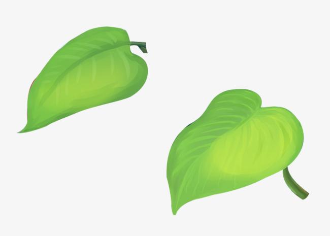 Dibujos Animados De Color Verde: Color Verde Hoja En Dibujo