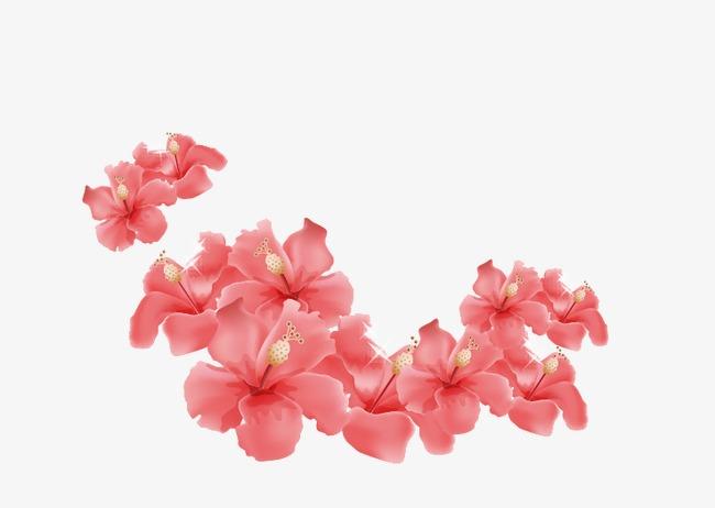 Cartoon Belle Fleur Rose Dessin Rose Exquis Png Et Vecteur Pour