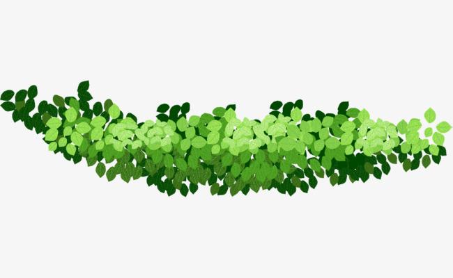 le dessin anim u00e9 une s u00e9rie de feuilles dessin un tas de feuilles vert image png pour le