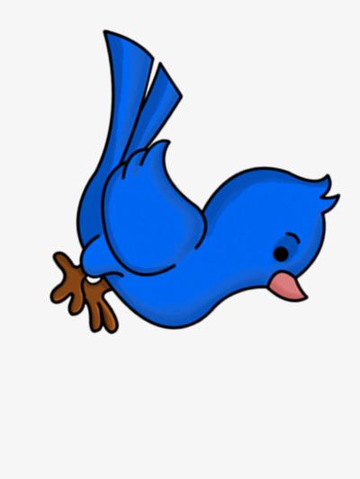 la couleur des oiseaux bleu mignon dessin image png pour