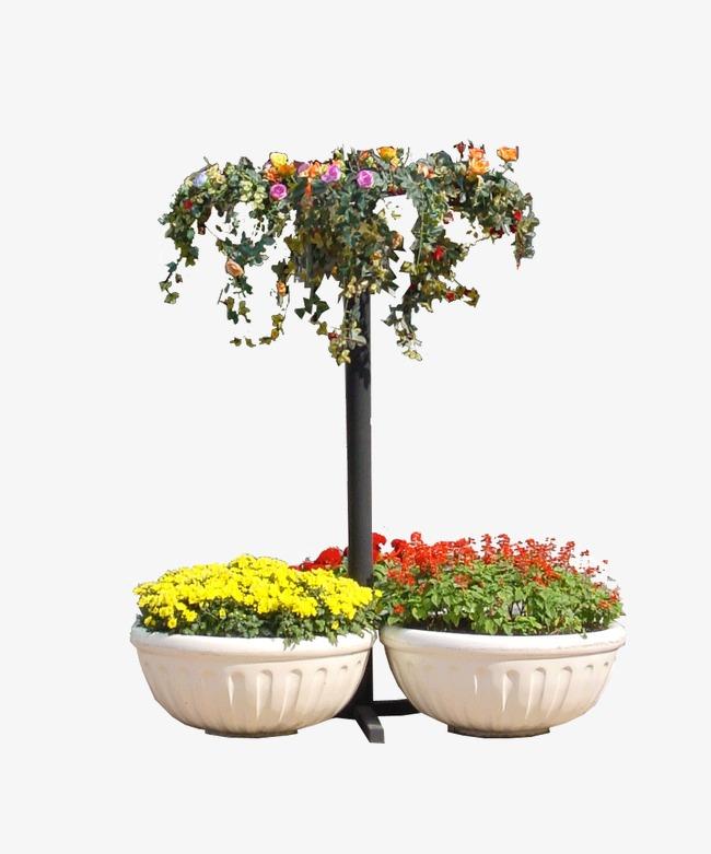 Blumen Und Material Grüne Pflanzen Garten Blumen Und Pflanzen Png