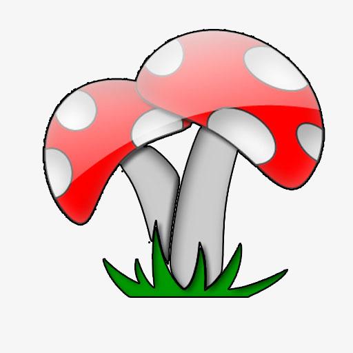 champignon de mat u00e9riau champignons couleur de champignons dessin de champignons image png pour