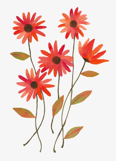 jolie petite fleur d u00e9coratif les fleurs une petite d u00e9coration mignon image png pour le