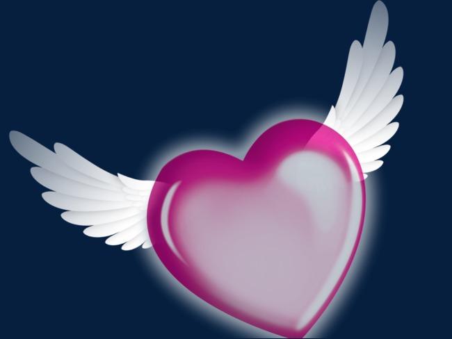 Lindo Amor Alas Amor En Forma De Corazon Ala Archivo Png Y Psd Para