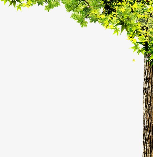 Hojas decorativas hojas decorativas decoracion de arboles - Arboles decorativos ...