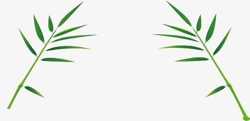 Dekorative Muster Bambus Grüne Der Frühling Png Bild Und Clipart Zum