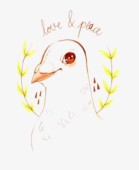 Tauben Muster Die Taube Fetten Taube Die Brieftaube Png Bild Und