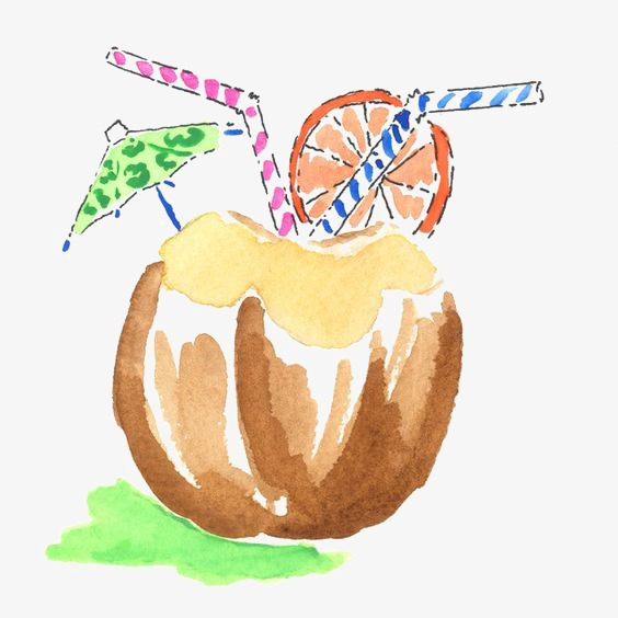 Drawing Coconut Clipart Fruit PNG Image And