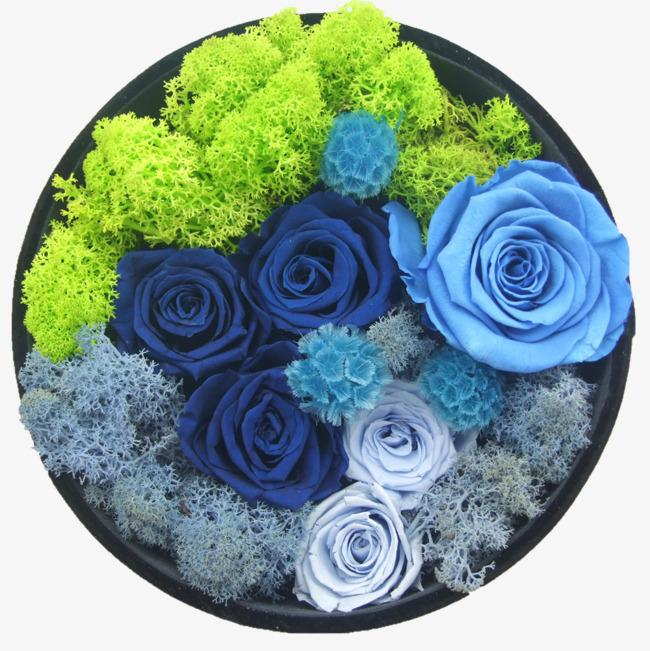 Boite Cadeau De Fleur De Vie La Vie Passe Boite Cadeau Bleu Fichier