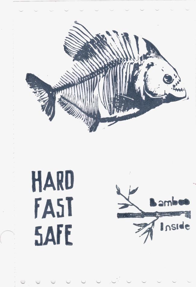 Die Gräten Ganze Fische Knochen Fisch Knochen PNG Bild und Clipart ...