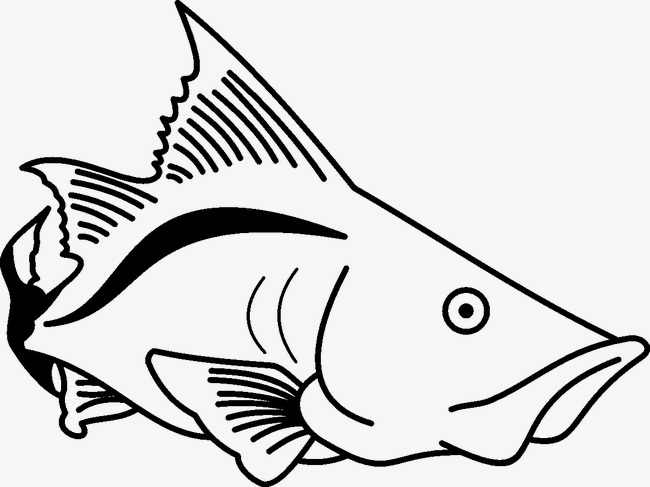 Fish Ocean Fish Clipart Image And Clipart For Free Download